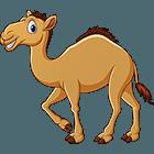 Anamule: Camel