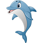 Anamule: Dolphin
