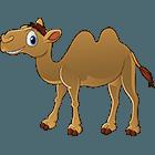 Anamule: Double Hump Camel