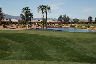Image of Palm Valley Golf Club – The Palms Course